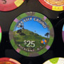 Sky City Auckland NZ $25 Casino Chip