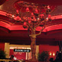 The Tree of Encore Lobby Bar