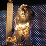 MGM Grand Lion - Vegas